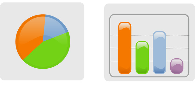 Statistika spletne strani