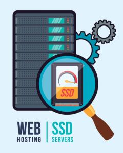 SSD gostovanje